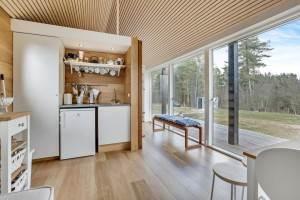 casa-scandinavia8